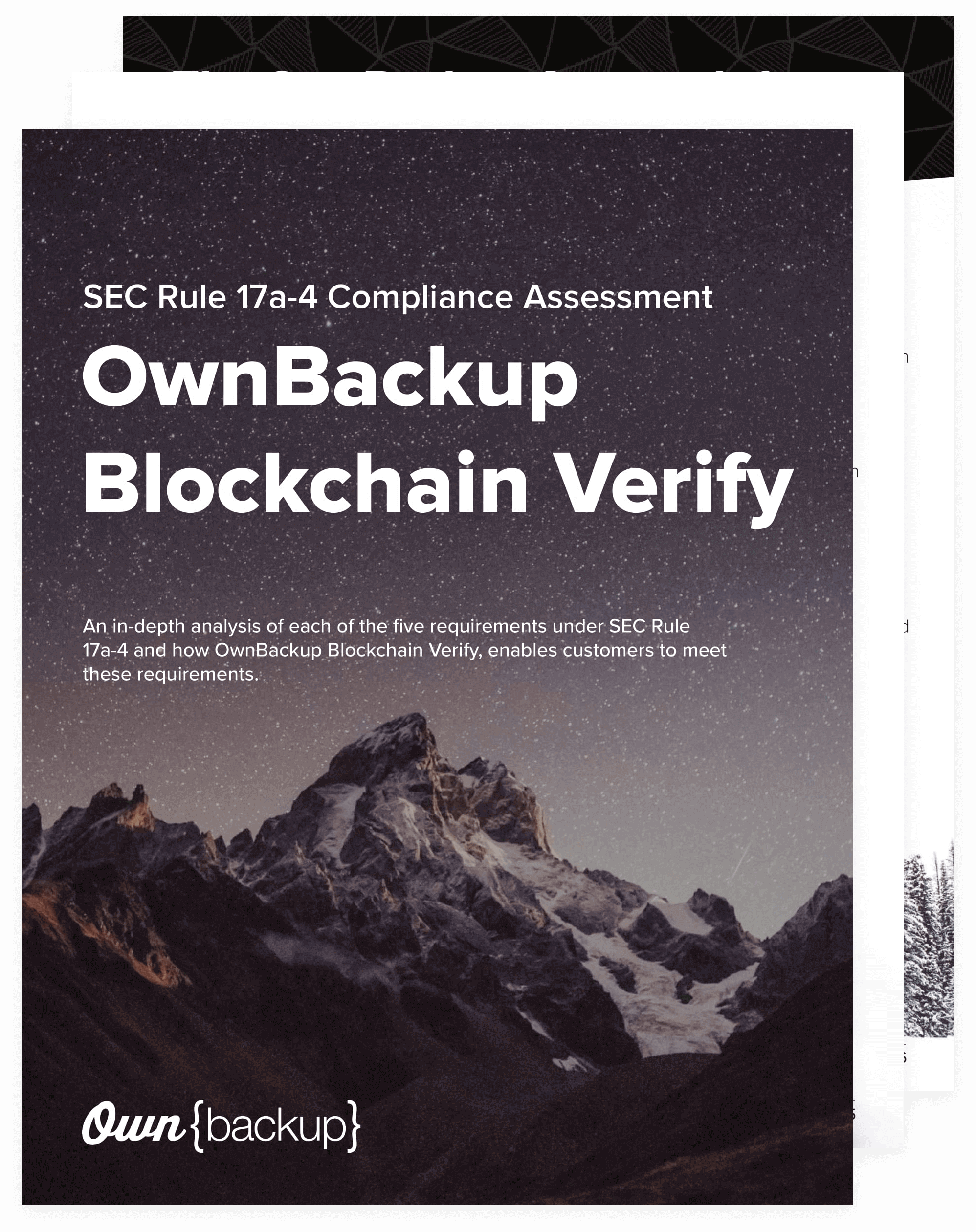 ebook-tn-ownbackup-blockchain-verify